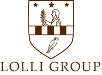 Lolli Group Web SEO Gestionale ERP