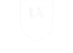 Lolli Group Web SEO Digital ERP